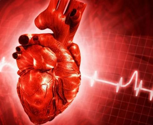 картинка болезни сердечно-сосудистой системы