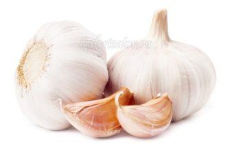 Чеснок – описание и сорта, состав и калорийность, польза и применение чеснока