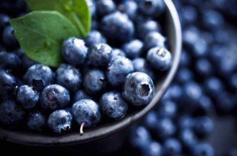 Нужны ли на самом деле витамины для глаз — может ли черника улучшить зрение